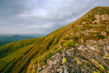 Colorful summer landscape in the Carpathian mountains.