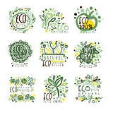Organic, bio, farm fresh, eco, healthy food set for label design. Ecology, nature vector Illustrations