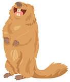 cartoon marmot animal character