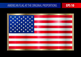 American flag in a metallic gold frame