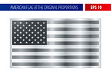 Silver American flag in a metallic frame