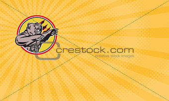 Angry Grizzly Food Supplements Business card
