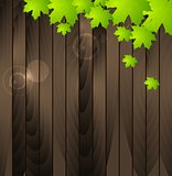 Green summer leaves on wooden background