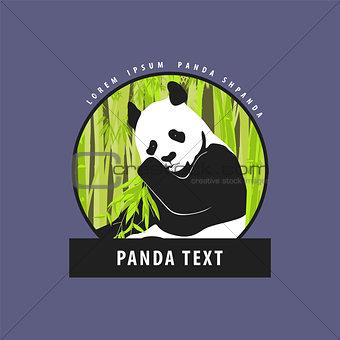 Bright logo with a beautiful panda