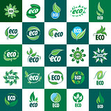 icon vector eco