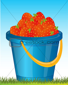 Pail with strawberries