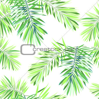 Bright tropical background with jungle plants. Seamless vector exotic pattern with green phoenix palm leaves.