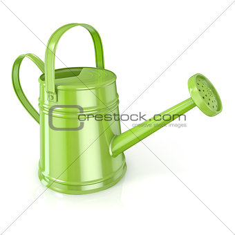 Green watering can 3D