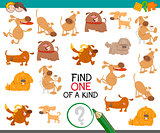find one of a kind with dogs