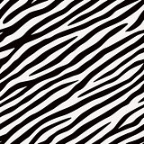 seamless pattern Zebra. Black and white colors.