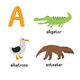Cute zoo alphabet in vector. A letter. Funny cartoon animals: Albatross,alligator,anteater