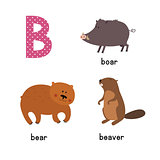 Cute zoo alphabet in vector.B letter. Funny cartoon animals: Bear, Beaver, boar.