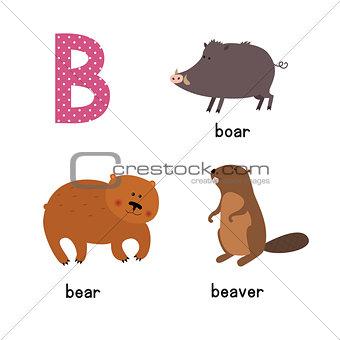 Cute zoo alphabet in vector.B letter. Funny cartoon animals: Bear, Beaver, boar.