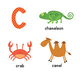 Cute children zoo alphabet C letter tracing of funny animal cartoon for kids learning English vocabulary.