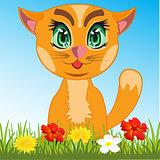 Cat in herb