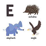 ABC letter E funny kid icons set: eagle, echidna, elephant.