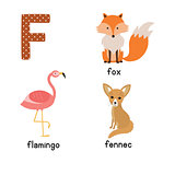 Letter F. Cute animals. Flamingo Fennec Fox. Funny cartoon animals in vector. ABC book.