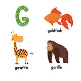 Cute zoo alphabet in vector.G letter. Funny cartoon animals: Goldfish giraffe,gorilla.