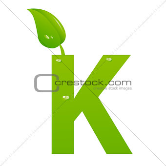 Green eco letter K vector illiustration