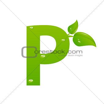 Green eco letter P vector illiustration