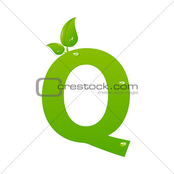 Green eco letter Q vector illiustration