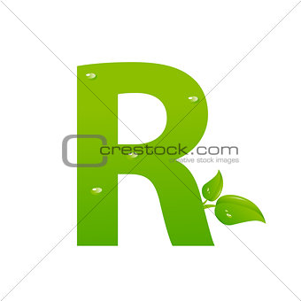 Green eco letter R vector illiustration