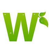 Green eco letter W vector illiustration