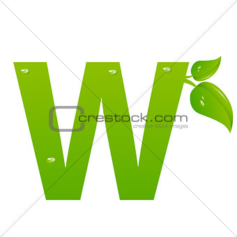 Green eco letter W vector illiustration