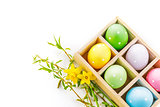 Easter eggs with spring flower greeting card