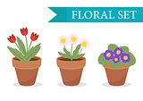 Flower pot with different flowers set, flat style. Flowerpot Collection isolated on white background. Vector illustration, clip art.