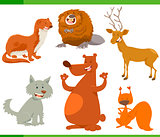 funny wild animal characters set