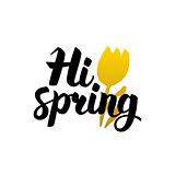 Hi Spring Handwritten Lettering