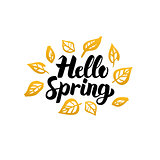 Hello Spring Gold Greeting Card