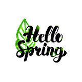 Hello Spring Green Inscription