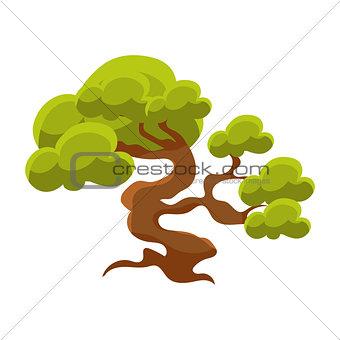 Green Tree Bonsai Miniature Traditional Japanese Garden Landscape Element Vector Illustration