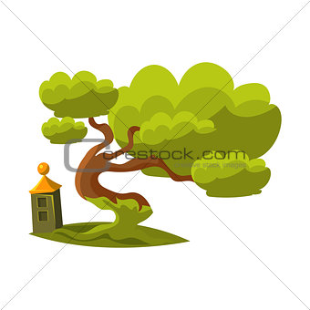 Green Old Oak Bonsai Miniature Traditional Japanese Garden Landscape Element Vector Illustration