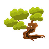 Green Old Tree Bonsai Miniature Traditional Japanese Garden Landscape Element Vector Illustration