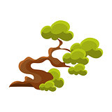 Green Crooked Tree Bonsai Miniature Traditional Japanese Garden Landscape Element Vector Illustration