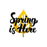 Spring is Here Handwritten Lettering