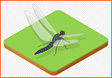dragonfly vector eps