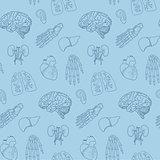 Human parts and organs pattern.