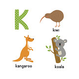 Cute zoo alphabet in vector. K letter. Funny cartoon animals: kangaroo, koala, kiwi bird