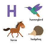 Letter H. Cartoon alphabet for children. vector illustration animal horse, hedgehog, Hummingbird