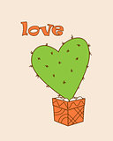 green cactus-heart in the flower pot