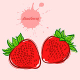 hand draw of strawberry