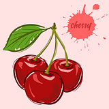 hand draw of cherry