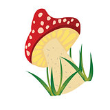 Mushroom draw over white background