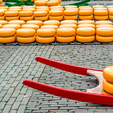 Traditional Dutch cheese market in Alkmaar, the Netherlands