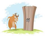 Ox looking at gates