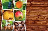 Organic fruit production, photo collage with copy space
